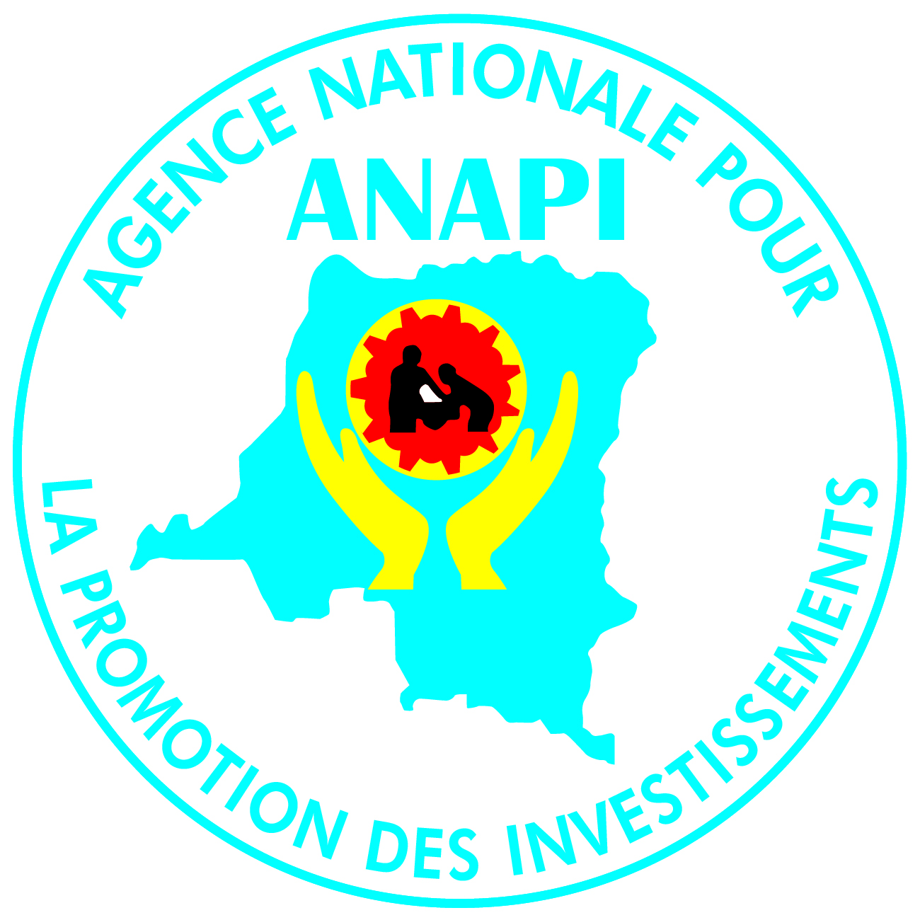 logo ANAPI bonne version modifiable